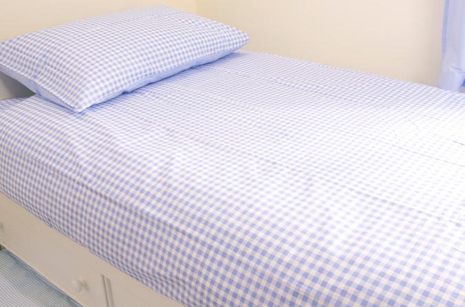 Blue Checked Bed Linen
