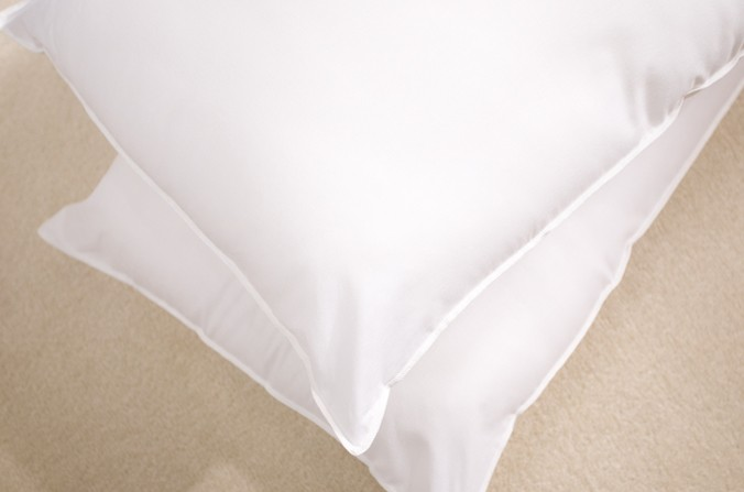 Wonderful Pair of Pillows