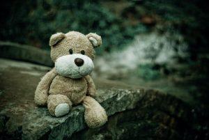 Bear looking sad